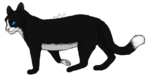 Description + Cat = Game! - Page 2 49lnNvJPKX6jFRqFZjjK